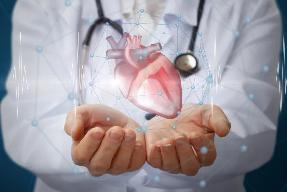 Cómo impacta el sedentarismo en la incidencia de las patologías cardiovasculares
